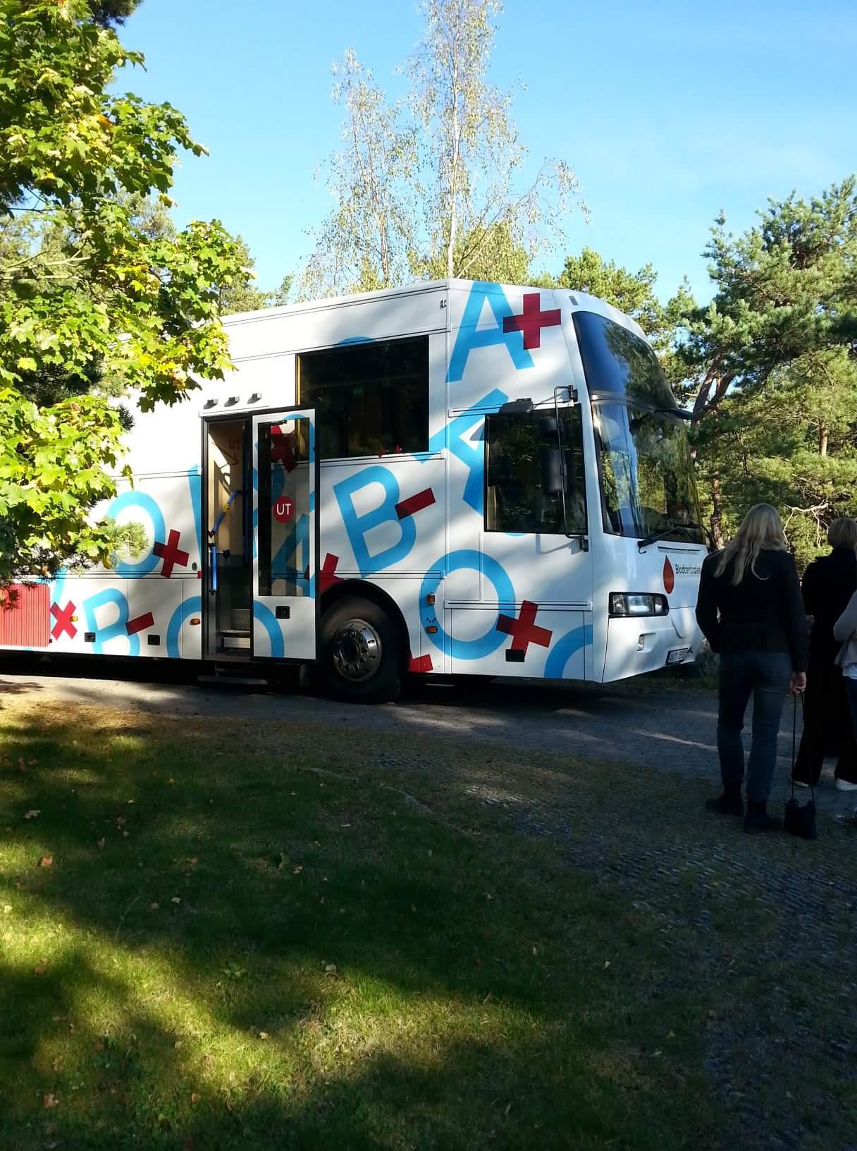 Buss 313
